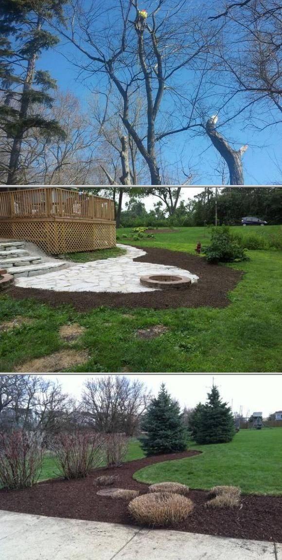 Tree Removal Trimming Garden Services Landscape Services Landscape Maintenance