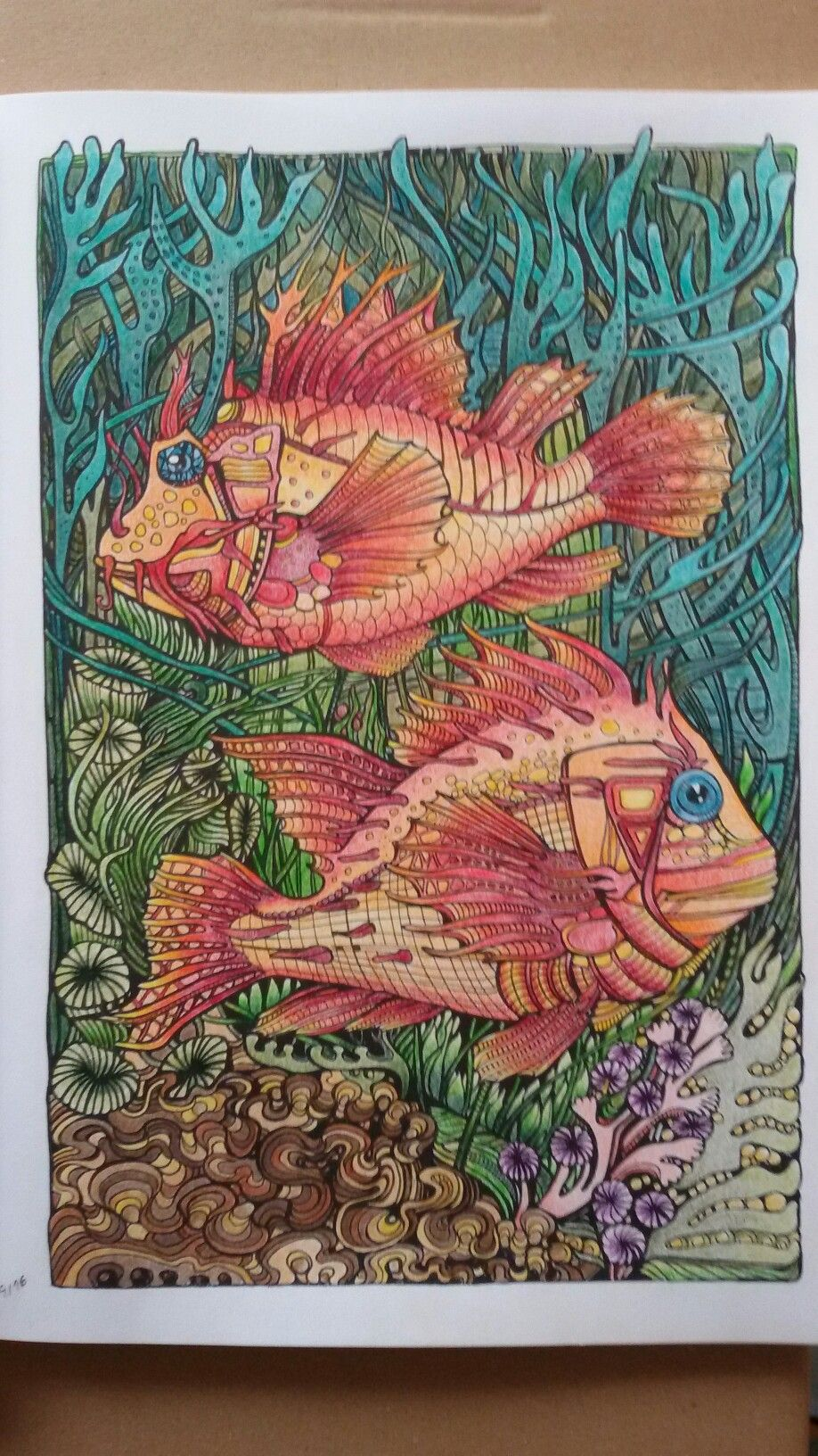 manicbotanic#polychromos | Coloring for Stress | Pinterest ...