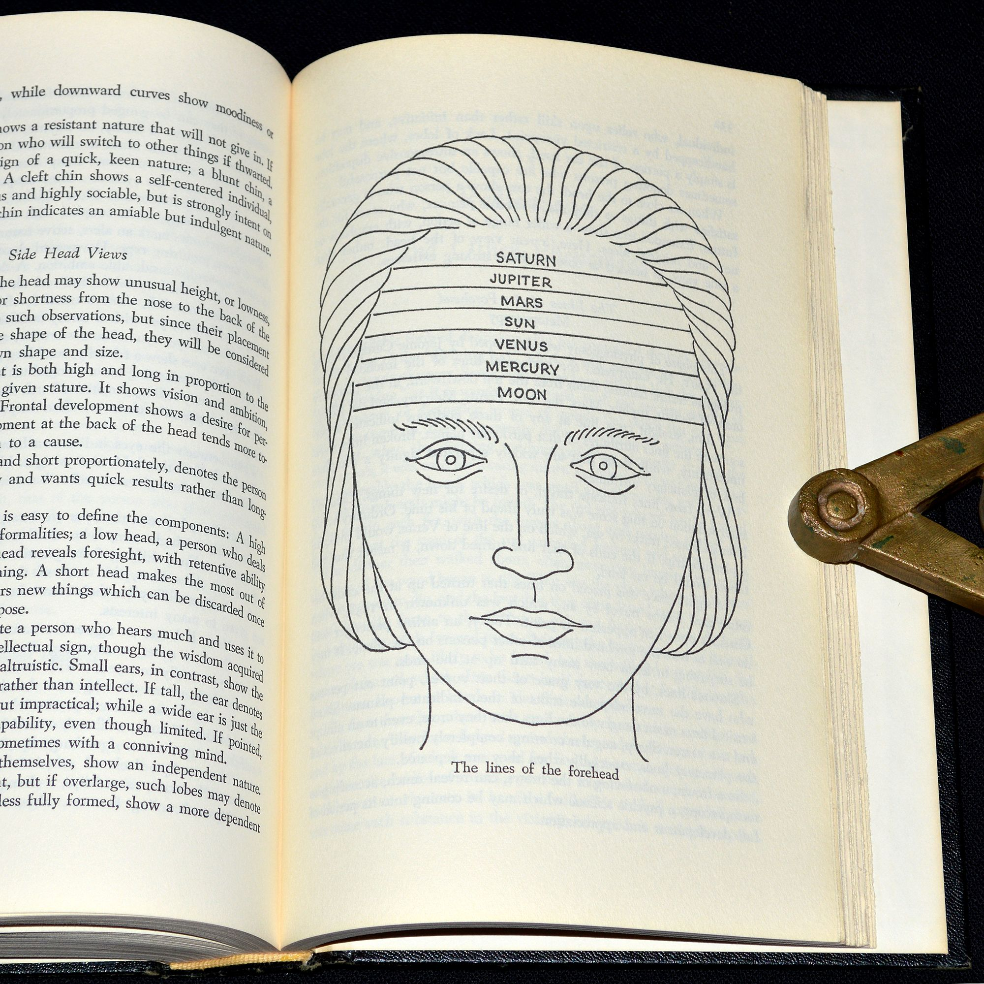 """Planetary lines of the forehead illustration taken from """"The Complete  Illustrated Book Of The Psychic Sciences""""… 