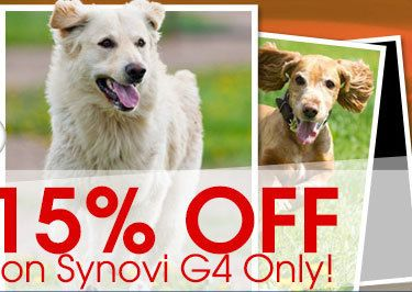 Entirelypets Coupon 20 Off Promo Codes Online Discounts Get 20 Off Plus Free Shipping With Entirelypets Coupon 20 Promo Codes Online Online Coding Coding