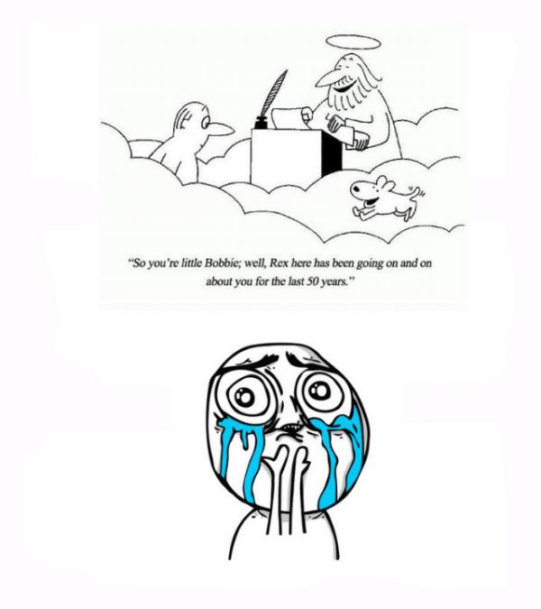 ok maybe i wanted to cry! ahhhh!