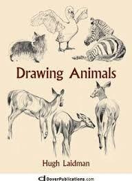 Resultado de imagen para animal eyes to draw