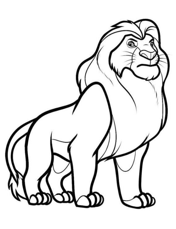 Animals coloring pages for children, lion, tiger, giraffe