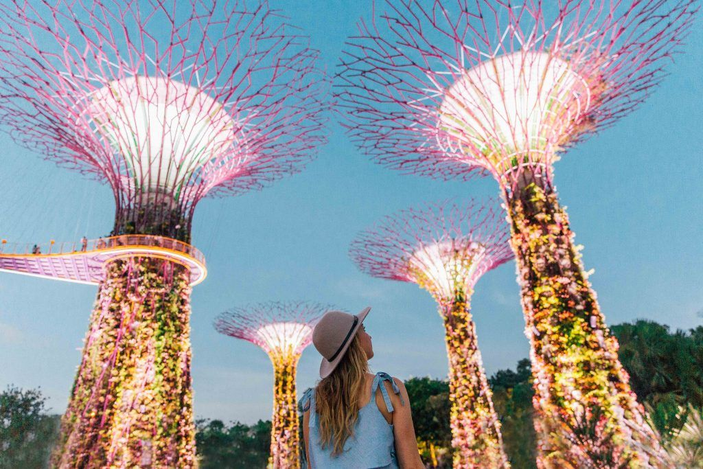 0fb91aba7d007498a474a04d9cfbccc5 - Gardens By The Bay Egg Light