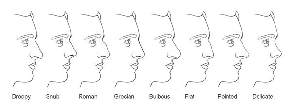 A Diagram Of Nose Types Noses Makeup Pinterest Characters