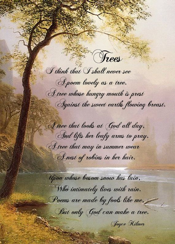 literary devices used in joyce kilmers poem trees He served as poetry editor of the literary was attributed to miss joyce kilmer praise and parodies ''trees'' first appeared in terms of.