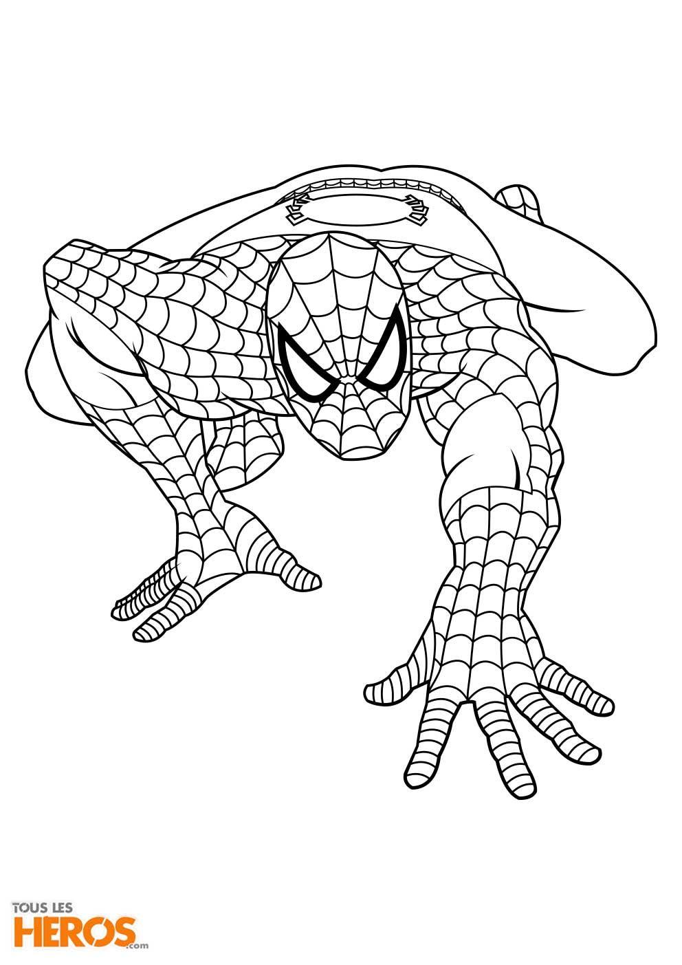 Coloriages spiderman imprimer sur le blog de tlh coloring coloring pages color et spiderman - Coloriage petit spiderman ...