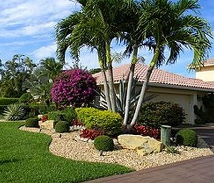 50 Florida Landscaping Ideas Front Yards Curb Eal Palm Trees 52