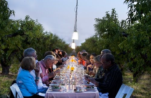Grab a seat down in the middle of a fragrant peach orchard and experience what will be one of the most memorable dining experiences of your life. Your evening starts just before sunset in the garden of the Schnepf Family homestead. And the evening will be filled with conversation, course after course of delectable cuisine, and new connections are being made. Guests are served while seated down a long white linen covered table in the middle of a peach orchard. #MesaAZ #SchnepfFarms