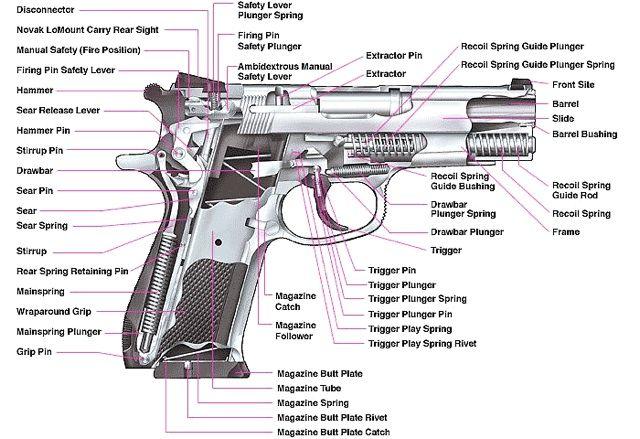 u s department of education 100 glocks 52 shotguns. Black Bedroom Furniture Sets. Home Design Ideas