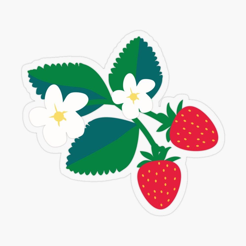 Ms Strawberry Sticker