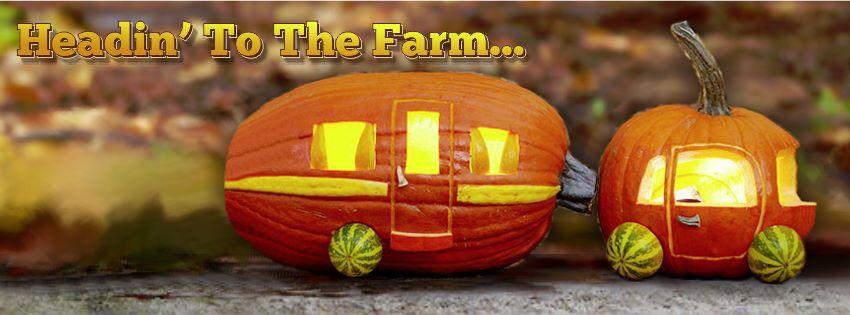 Like this | Pumpkin, Origin of halloween, Pumpkin carving