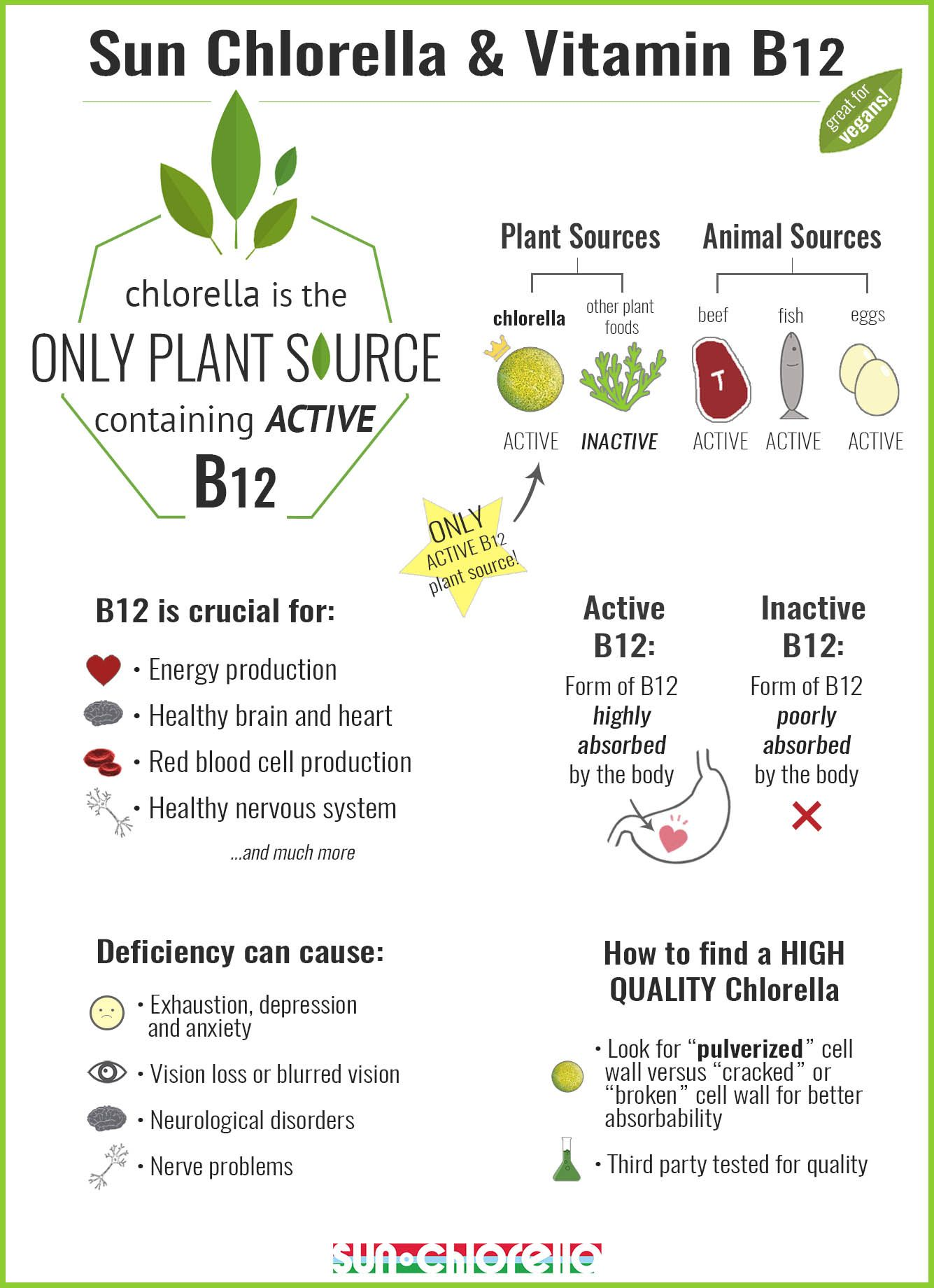 Sun Chlorella is an excellent source of Vitamin B12, great
