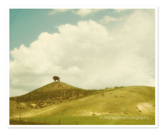 Spring Bright Rustic Western Landscape Photography, Modern Wall Art ...