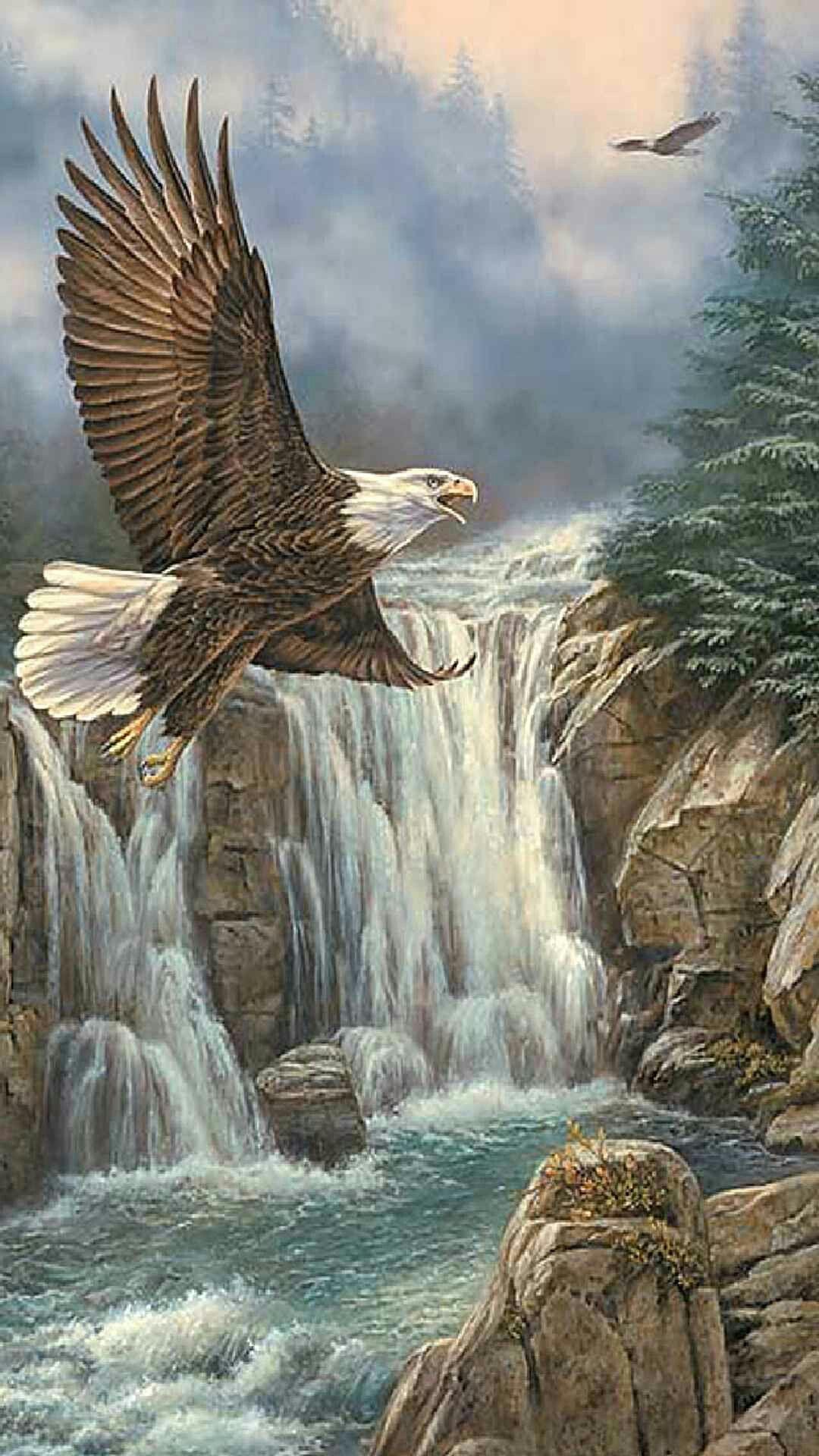 Aigles 2   ideas   Pinterest   Arte loco, Pajaros exoticos y Aves de ...