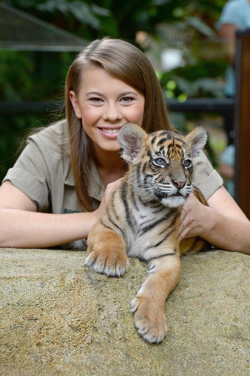 Tiger Day Irwin Family, Bindi Irwin, Steve Irwin, Amelia