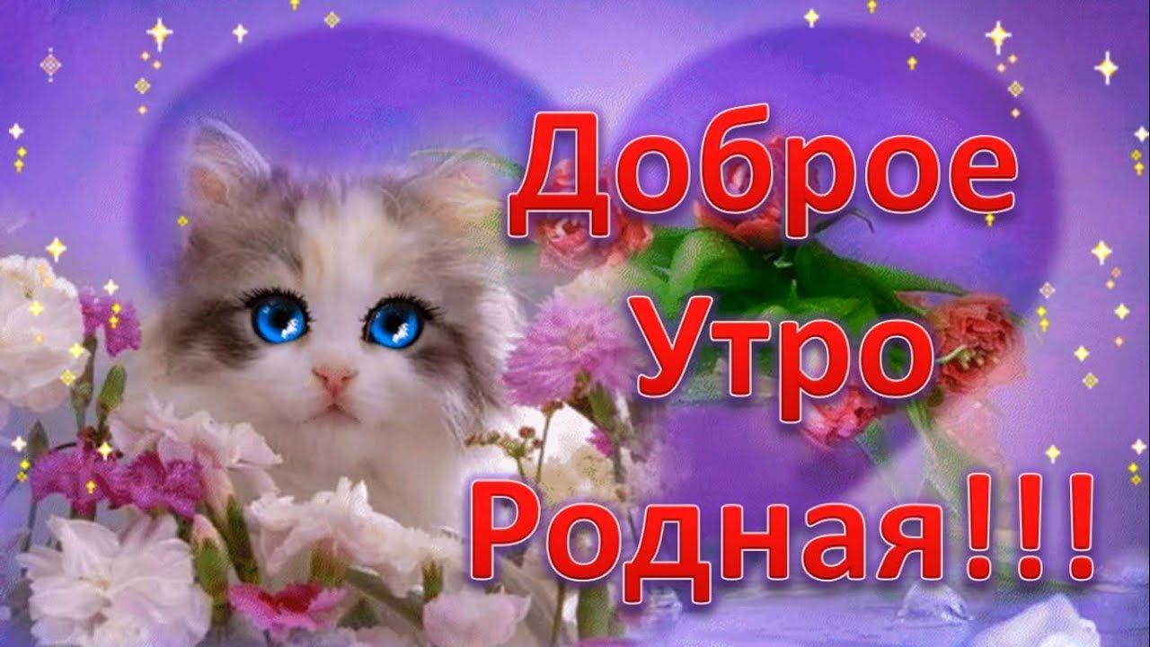 S Dobrym Utrom Rodnaya Lyubimaya Pozhelanie Dobrogo Utra Zhenshine
