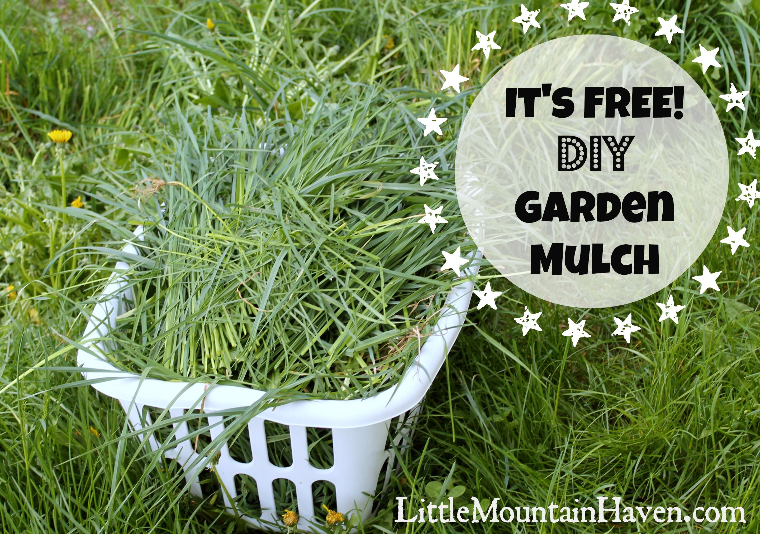 Superieur DIY Garden Mulch To Prevent Weeds!