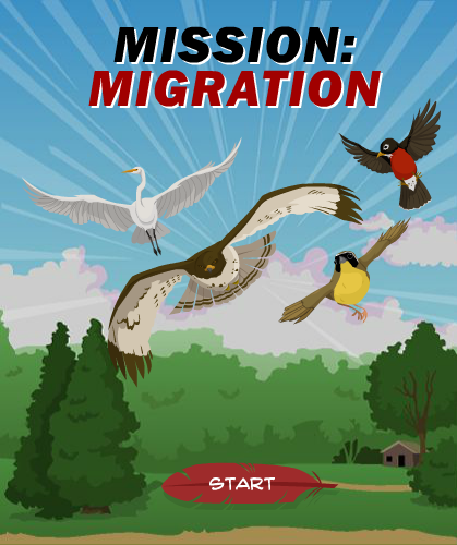 In this game you will try to help your flock migrate safely by learning how choices you make each and every day around your home, school, and neighborhood can affect the fate of these migrating birds - in both positive and negative ways. By the time you're done, you'll have the skills and knowledge to help birds thrive and survive around your home. http://www.audubon.org/mission-migration-game