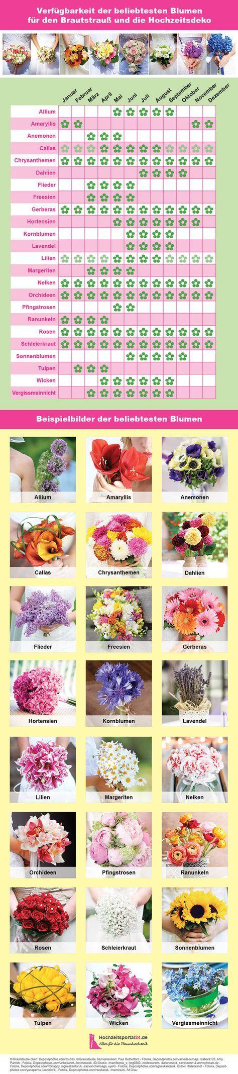 Blumenlexikon und Verfügbarkeit der Blumen für die Hochzeitsdeko, den Brautstrauß oder die Tischdeko zur Hochzeit. #blumenfürgarten