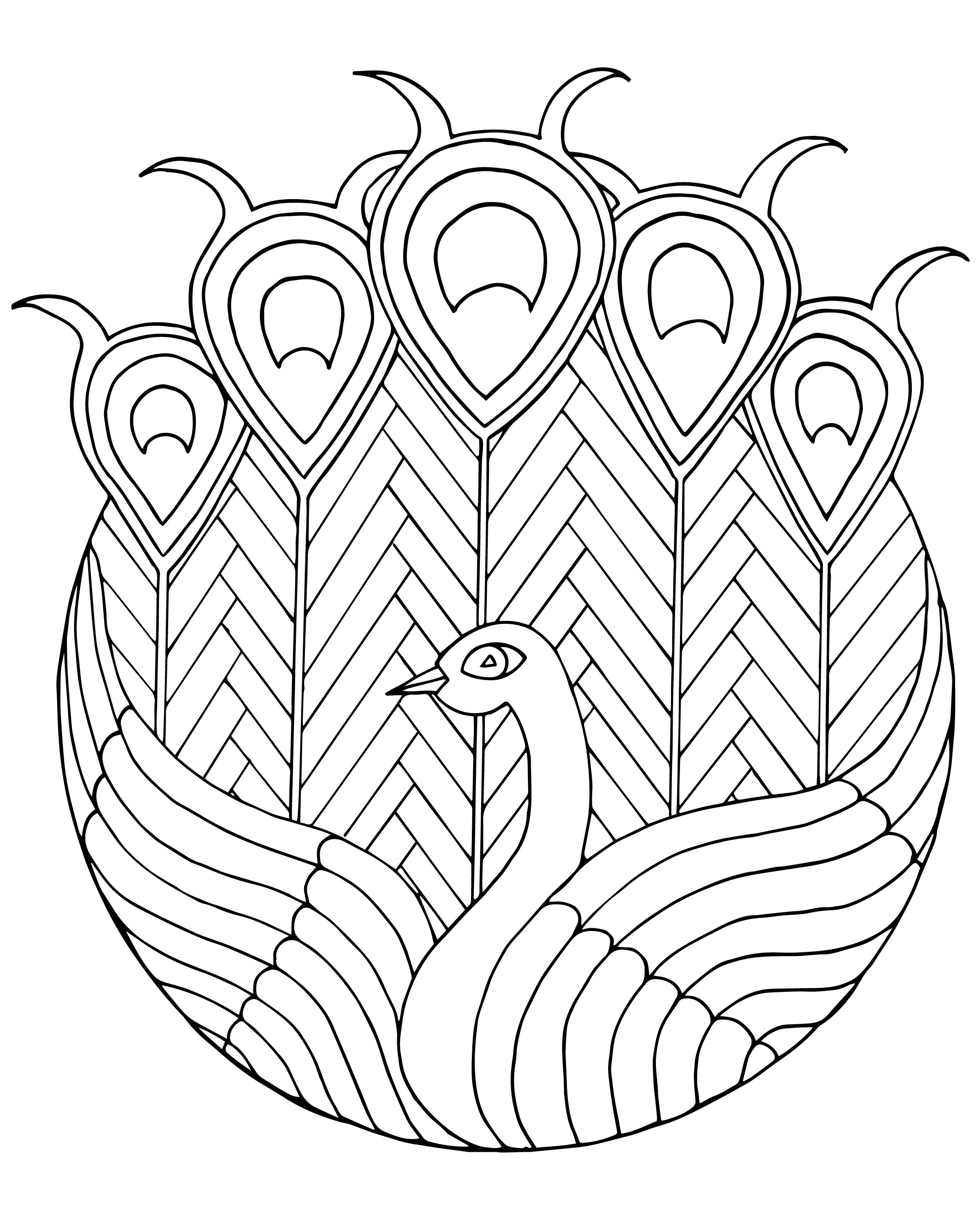 peacock stained glass adult coloring page