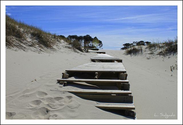 La entrada a la hermosa playa de Pinamar!