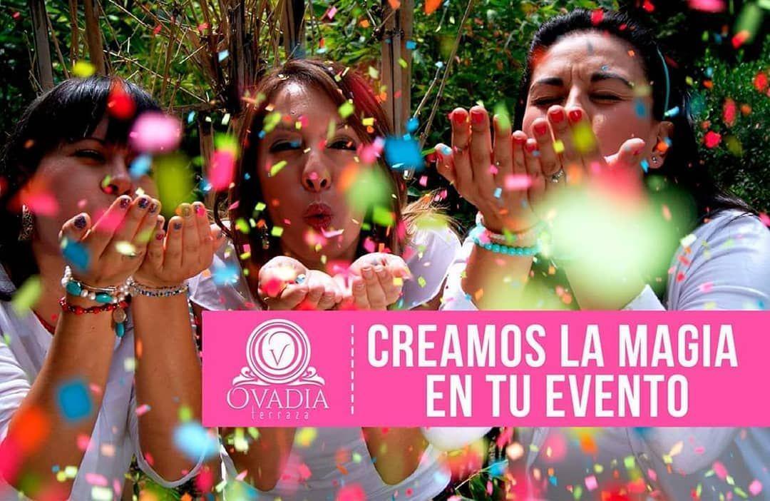 Organizacion Guadalajara Informes Followme Informes