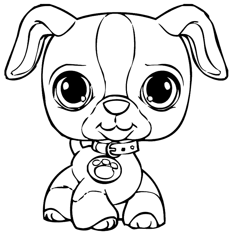 Puppy Coloring Pages - coloring.rocks! | Puppy coloring ...