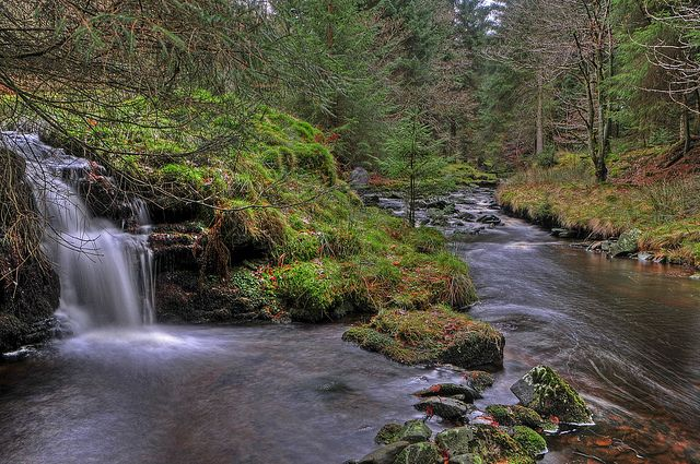 Woodland and Waterfalls (explore 9/12/2013) | Flickr - Photo Sharing!