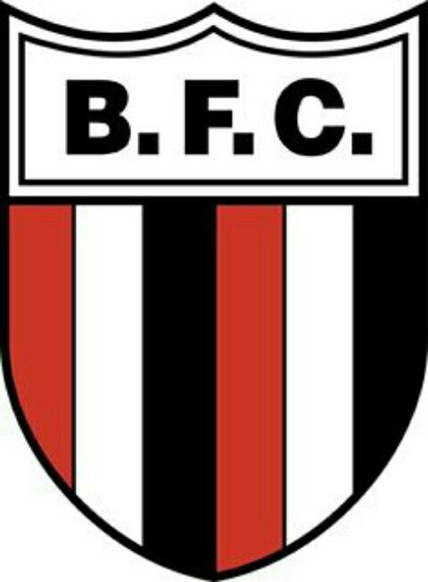 Botafogo of Brazil crest.