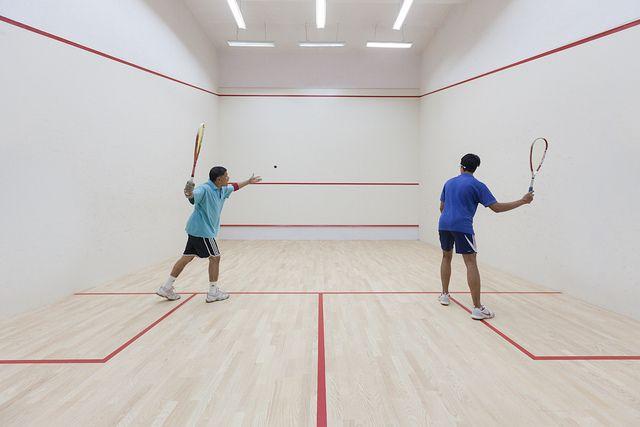 25 Squash The Sport ideas | squash, sports, squash game