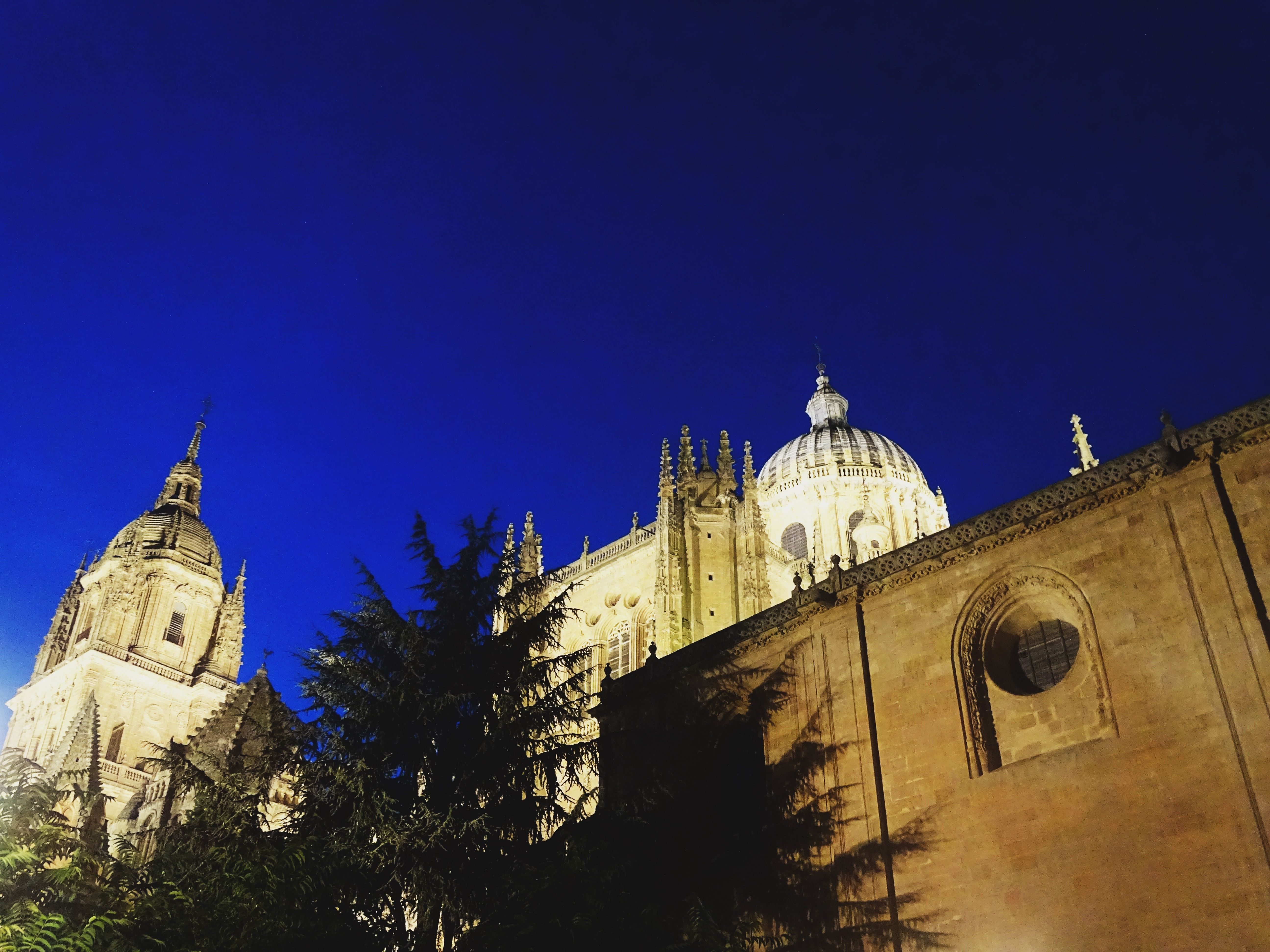Old. Cathedral. Salamanca. Trees. Spain. South. Trip. Travel, Traveling. Night. Photograph. Art | Instagram: cbriannem
