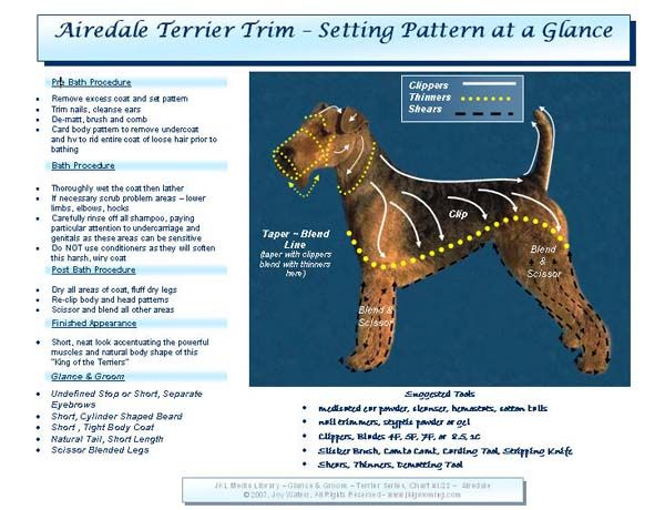 Helpful Chart Maybe Now The Groomer Will Stop Leaving Our