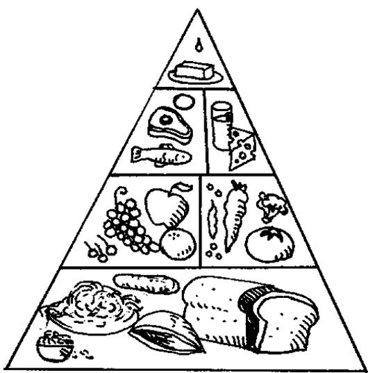 The Food Pyramid With A Nice Array Of Coloring Page Kids