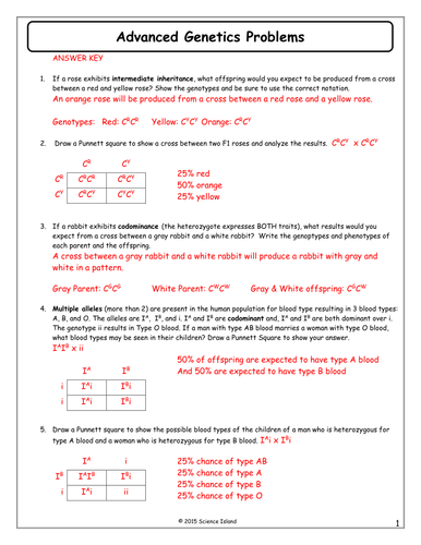 Genetics worksheet part 10