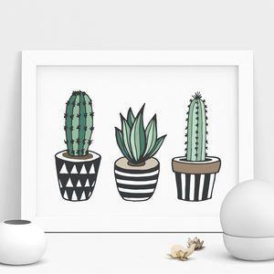 Cactus Print Illustrated Set In Green