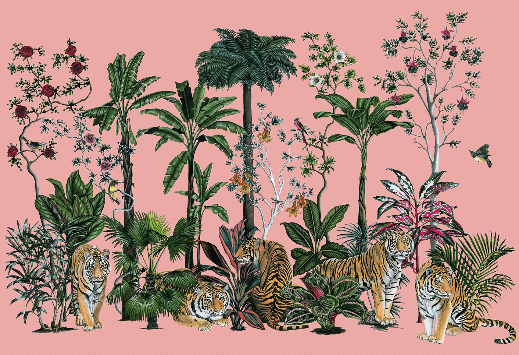Tiger Summer Pink Botanical Removable Wallpaper Wall Mural