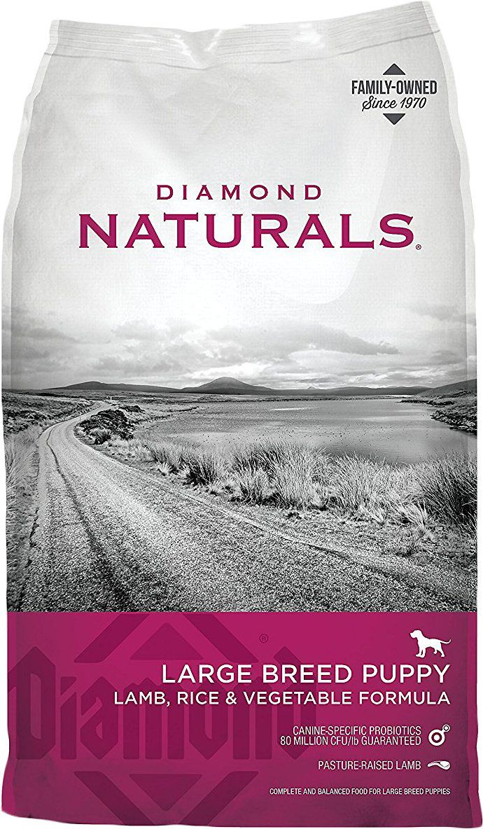 Diamond Naturals Large Breed Puppy Formula Dry Dog Food