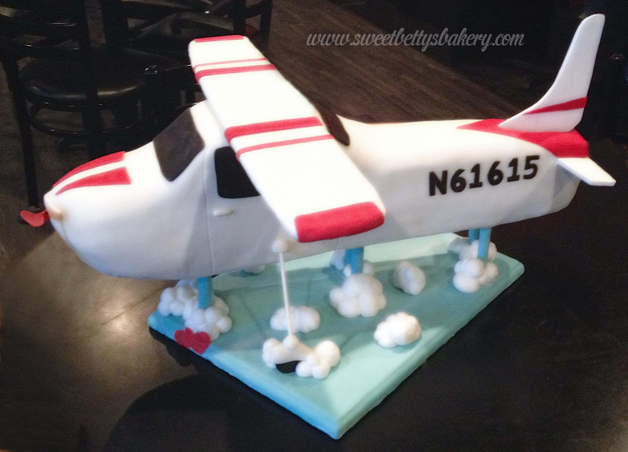 Airplane cake by Sweet Bettys Bakery my Daughters creations
