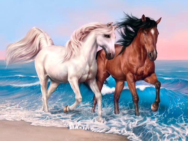 Horse Wallpaper Hd Free Download Hd Wallpaper Horse Art