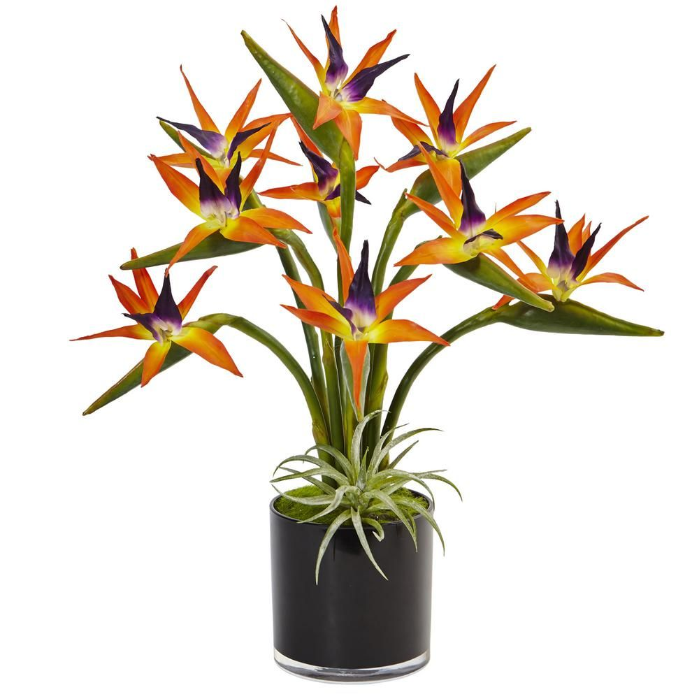 Nearly Natural Indoor Bird Of Paradise Silk Arrangement In Black Glossy Cylinder 1466 The Home Depot Birds Of Paradise Plant Silk Plants Paradise Flowers