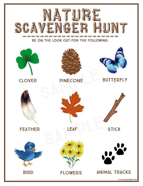 Nature Scavenger Hunt Kids Summer Activity Nature Scavenger