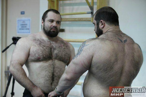Bears chubs and cubs