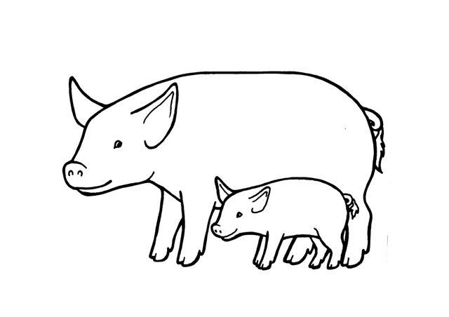 Resultado De Imagen Para Dibujos Para Pintar De Princesas: Resultado De Imagen Para Animales Y Sus Crias. Dibujos