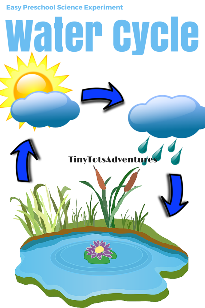 Easy preschool science experiment water cycle toddlers prek to k easy preschool science experiment water cycle ccuart Choice Image