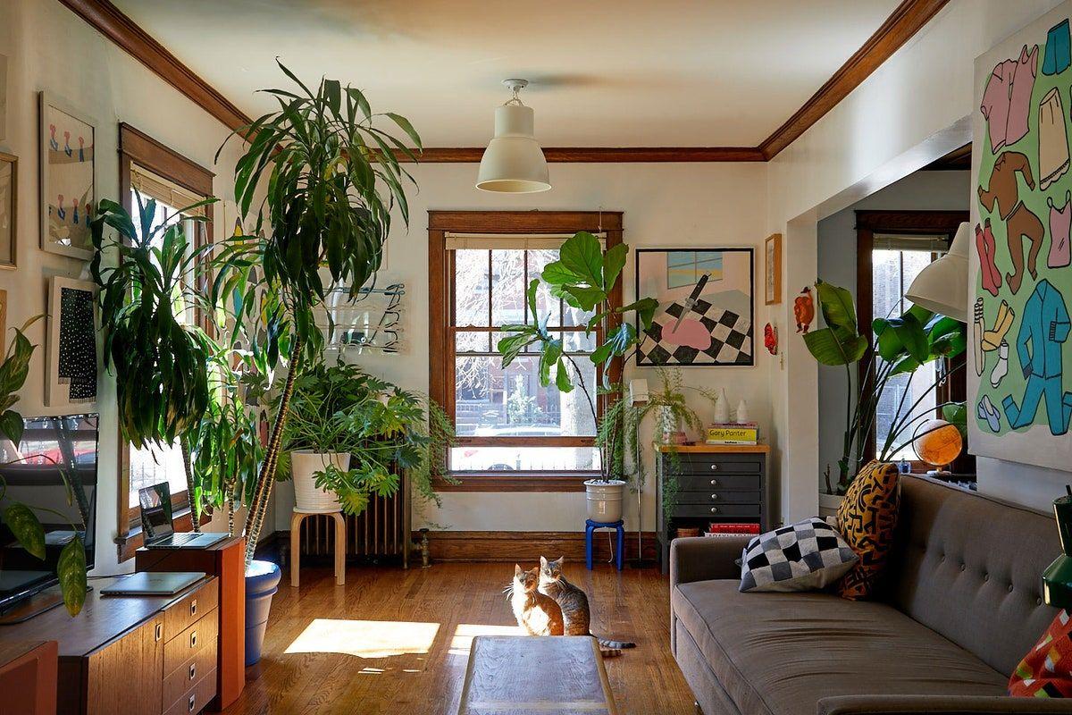 Derek Erdman's Chicago Apartment Is Brimming With Art and Oddities