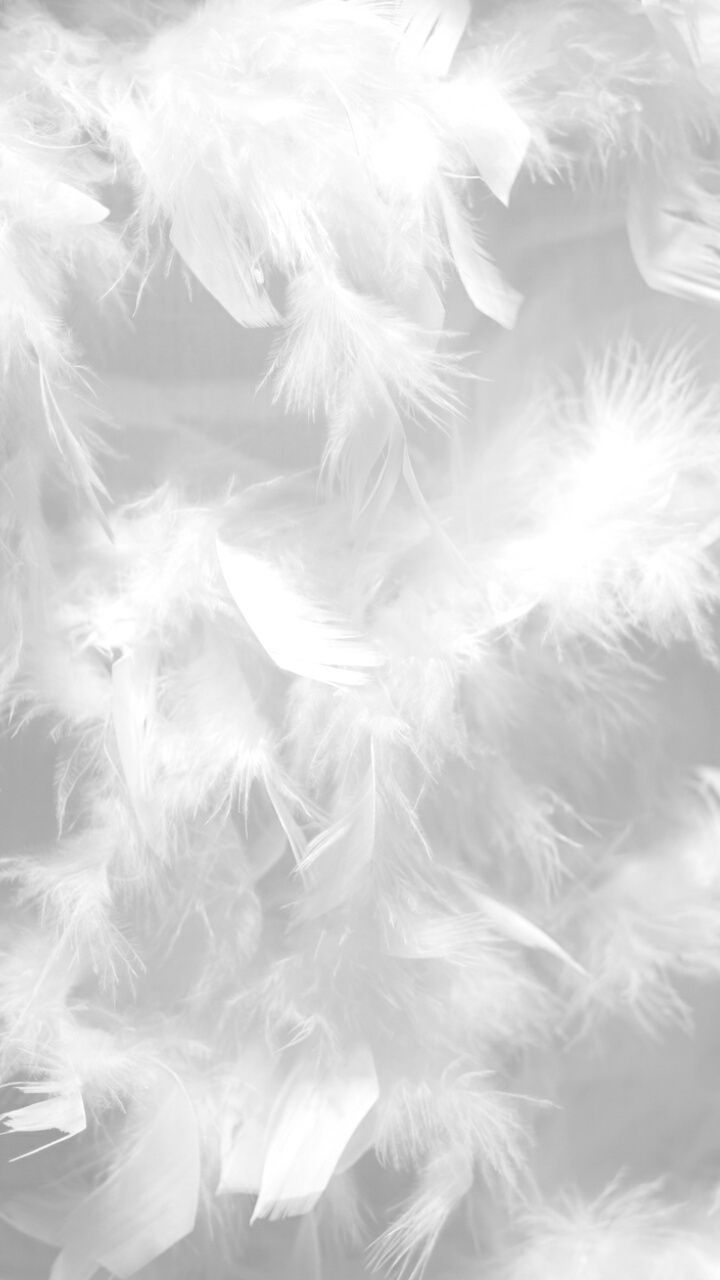 Wallpaper of white textures background. wallpaper white