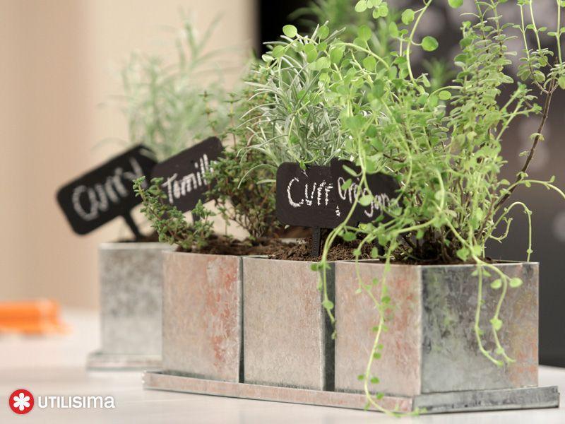 Huerta arom tica por anika cundo util sima jardiner a for Utilisima decoracion de interiores