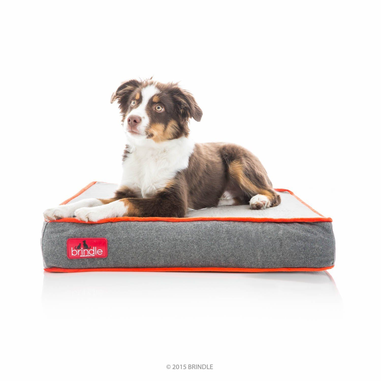 Chew Proof Dog Bed Indestructible Dog Bed Chewproof Dog Beds Chew Proof Dog Beds Chew Resistant P Memory Foam Pet Bed Memory Foam Dog Bed Foam Pet Bed