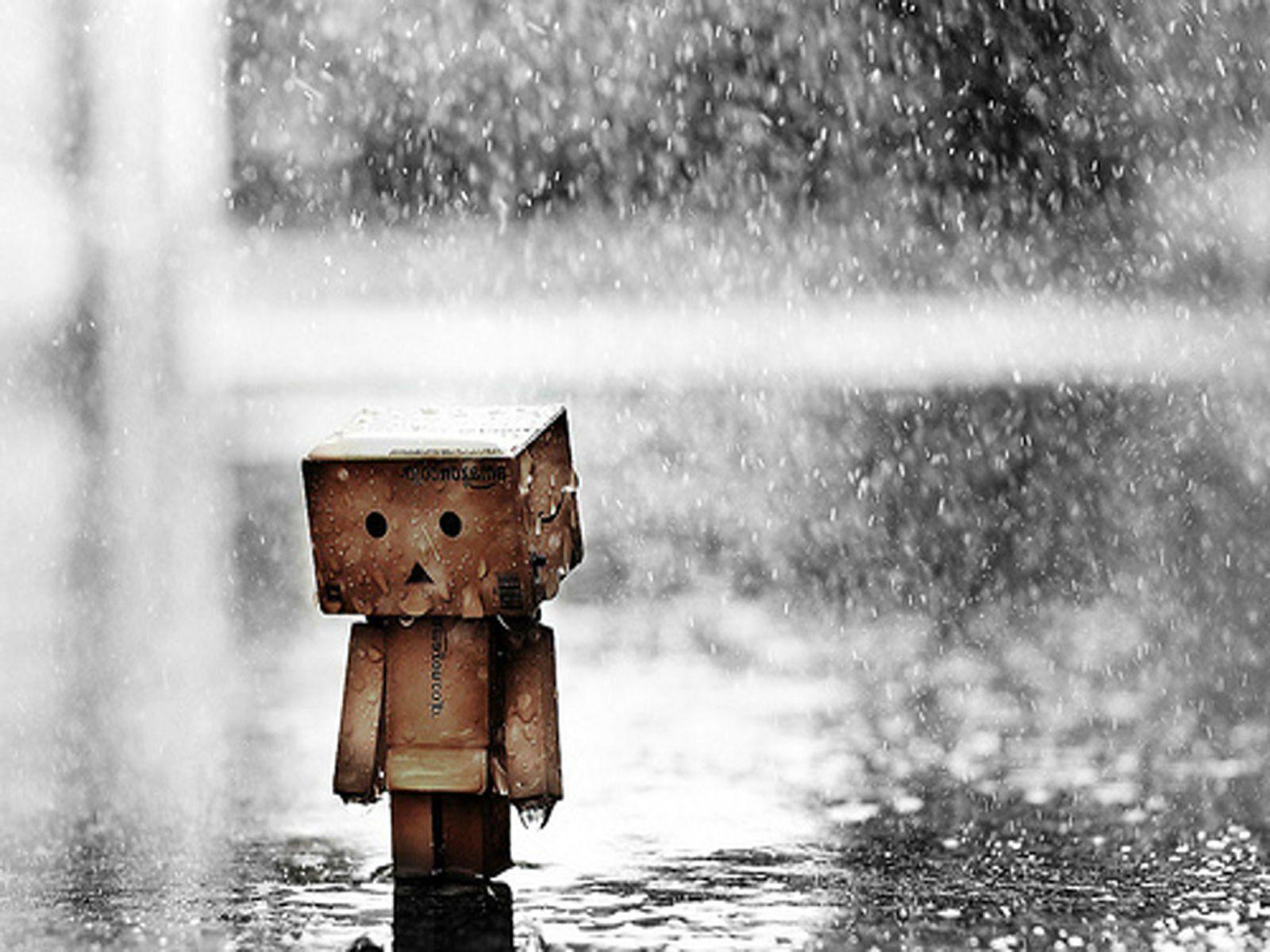 Danbo Rain Wallpaper Picture Wallpaper Pictures Rain Wallpapers Cool Backgrounds